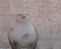 HORUS bóg W EDFU świątyni Obraz Stock