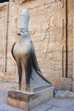 HORUS bóg W EDFU świątyni Zdjęcia Stock