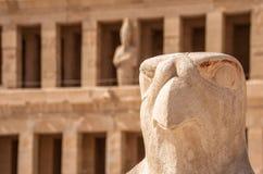 Horus che custodice il tempio di Hatshepsut nell'Egitto, valle dei re, Luxor, Egitto Immagini Stock