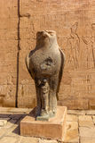 Horus Edfu Stock Images