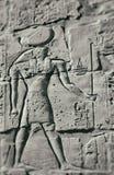 Horus the falcon Royalty Free Stock Photography