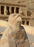Horus-Statue am Tempel von Hatshepsut in Ägypten Lizenzfreies Stockbild