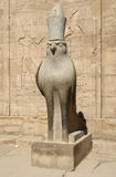 Horus statue at the Temple of Edfu in Egypt. Sunny illuminated scenery including a statue of Horus at the ancient Temple of Edfu in Egypt (Africa royalty free stock images