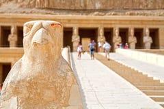 Horus. Tempel av Hatshepsut. Luxor Egypten Arkivbilder