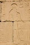Horus, Temple of Seti I. Stone carving of the Ancient Egyptian god Horus on a wall of the Temple of Pharoah Seti I on the West Bank of the River Nile at Luxor Stock Photo