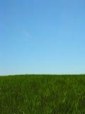 horyzont Obrazy Stock