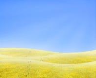horyzont kroków Zdjęcia Stock