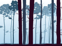 Horyzontalna ilustracja pinewood las. Fotografia Royalty Free
