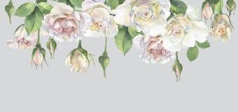 Horyzontalna rama róże royalty ilustracja