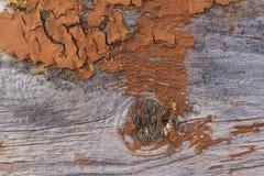Horyzontalna textured stara szara drewniana deska z flaked brązu bólu teksturą Fotografia Stock