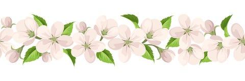 Horyzontalny bezszwowy tło z jabłczanymi okwitnięciami również zwrócić corel ilustracji wektora ilustracja wektor