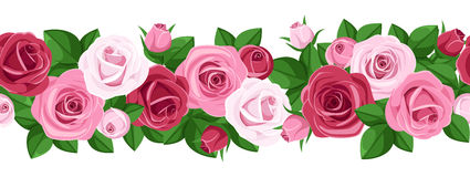 Horyzontalny bezszwowy tło z różami. Zdjęcia Stock