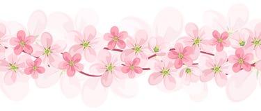 Horyzontalny bezszwowy tło z różowymi kwiatami. ilustracji