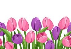 Horyzontalny bezszwowy tło z tulipanami. ilustracja wektor