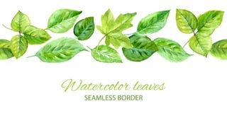 Horyzontalny bezszwowy tło z zielonymi liśćmi Akwarela wektor ilustracji