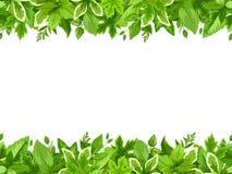 Horyzontalny bezszwowy tło z zielonymi liśćmi również zwrócić corel ilustracji wektora ilustracji