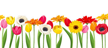 Horyzontalny bezszwowy tło z kolorowymi kwiatami również zwrócić corel ilustracji wektora Fotografia Royalty Free