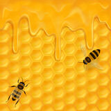 Horyzontalny bezszwowy wzór z honeycomb royalty ilustracja