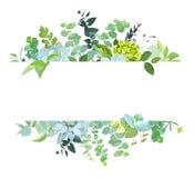 Horyzontalny botaniczny wektorowy projekta sztandar ilustracji