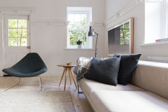 Horyzontalny luksusowy neutralny wewnętrzny żywy pokój Zdjęcia Royalty Free