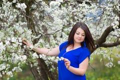 Horyzontalny portret młoda Kaukaska brunetki kobieta blisko kwitnie śliwkowego drzewa, patrzeje z kamery fotografia stock