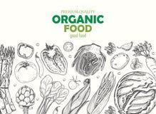 Horyzontalny tło z różnymi warzywami Żywność organiczna royalty ilustracja