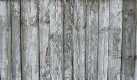 Horyzontalny wieśniak wietrzał starego malującego drewnianego tło z kępkami i gwóźdź dziurami DREWNO tekstura fotografia stock