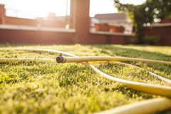 Hose deployed on the garden grass. Water coming out of hose deployed on the garden grass stock images