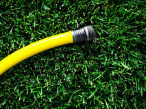 Hose on Green Grass Stock Images