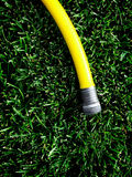 Hose on Green Grass Royalty Free Stock Images