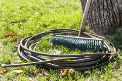 Hose for irrigation water. Old brush. Autumn grass with old shee Royalty Free Stock Images