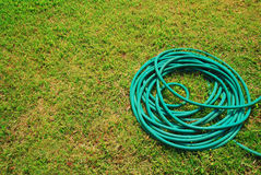 Hose lawn. Green grass background garden outdoor Royalty Free Stock Photo