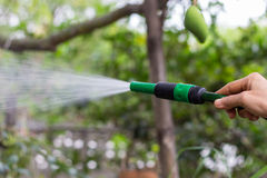 Hose Nozzle. Garden Hose Nozzle,Hand Sprayer water Sprinklers royalty free stock image