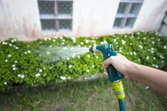 Hose nozzle spraying water. On plants outdoors stock image