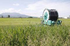 Hose and Reel for Farm Irrigation Royalty Free Stock Image