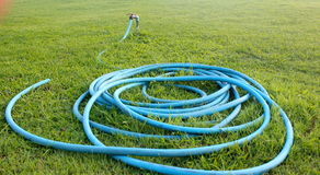 Free Hose Set On Garden Royalty Free Stock Images - 46517029