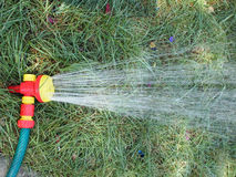 Hose with a spray watering the lawn closeup Royalty Free Stock Photo