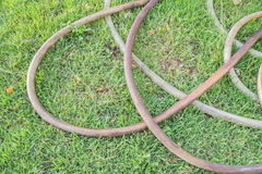 Hose watering Royalty Free Stock Photography