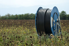Hose for watering the land Stock Photos