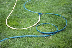 Hose for watering of lawn water Stock Photo
