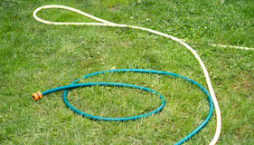 Hose for watering of lawn water Stock Photos
