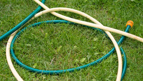 Hose for watering of lawn water Royalty Free Stock Images