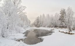 The hose of the Yenisei River or the Yenisei River in winter. The banks and trees are covered with snow and frost. Khakassia. Siberia. December 2017 year Stock Photos