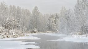 The hose of the Yenisei River or the Yenisei River in winter. The banks and trees are covered with snow and frost. Khakassia. Siberia. December 2017 year Royalty Free Stock Photography