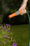 hosepipe запрета Стоковые Фотографии RF