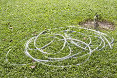 Hosepipe in park. Curled of old hosepipe on lawn in public park royalty free stock photography