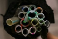 Hoses bouquet cutted stock photography