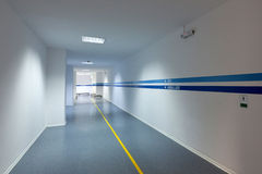 Hospital hall. Empty hall of modern hospital Royalty Free Stock Images