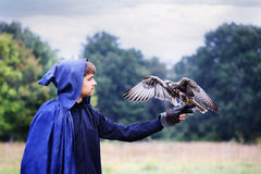 Host and falcon Royalty Free Stock Photography