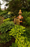 Hosta garden and clay pot character Stock Images